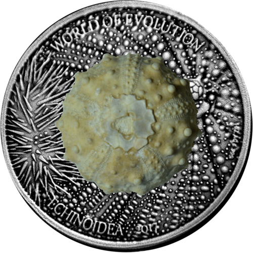 "1.000 Francs CFA Burkina Faso 2017 ""World of Evolution - Echinoidea"" - mit echtem fossilem Seeigel"