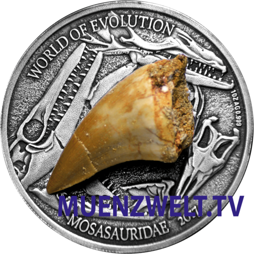 "1,000 Frcs CFA Burkina Faso 2017 ""World of Evolution - Mosasaurus"" - with  fossil Mosasaurus tooth"